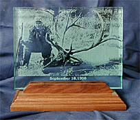 etched glass on walnut stand